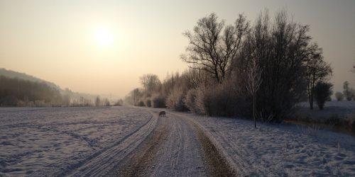 2014 Winter (1)