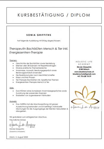 2020-08 Diplom Bachblueten